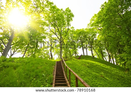 ladder to the hill, summer - stock photo