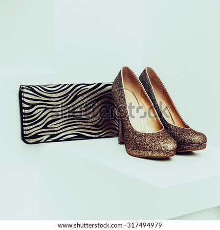 Lady Accessories. Stylish evening Shoes and Clutch - stock photo