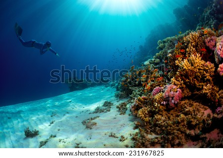 Lady free diver swimming underwater towards vivid coral reefs - stock photo