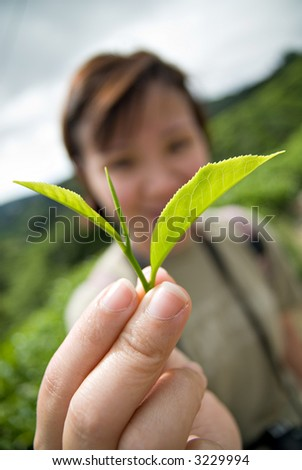 Lady holding up a tea leaf