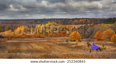Lady in riding habbit XIX Century at horse hunting - stock photo