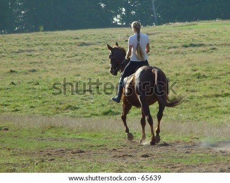 lady on a horse - stock photo