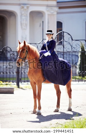 Lady on a  horse. The lady on riding walk. The woman astride a horse. The aristocrat on riding walk. - stock photo