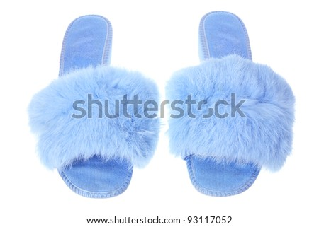 Lady S Bedroom Slippers On White Background