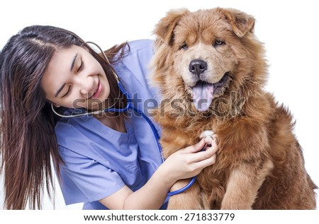 Lady veterinary doctor examining a dog with stethoscope. Isolated in white background.