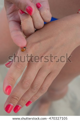 Ladybird on a hand of the girl
