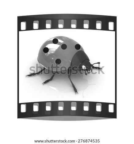 Ladybird on a white background. The film strip - stock photo