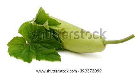 Lagenaria vulgaris fruit isolated on white background, with leaf - stock photo