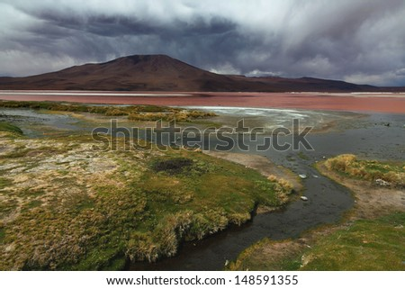 Laguna Colorada, Altiplano plateau in Bolivia - stock photo