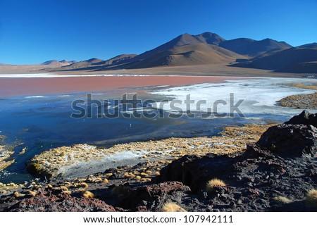 laguna colorada in bolivian desert with red copper seaLaguna Colorada - stock photo