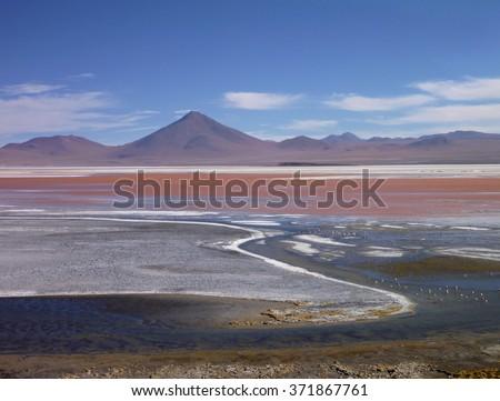 laguna colorada lake in bolivian altiplano with flamingos - stock photo