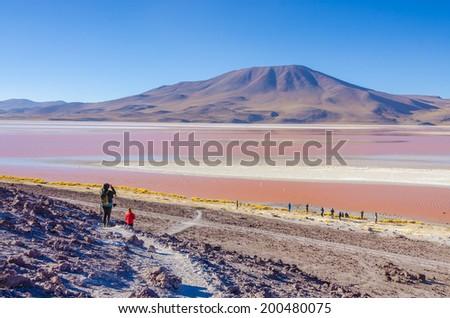 Laguna Colorada, Reserva Nacional de Fauna Andina Eduardo Avaroa, Los Lipez, Bolivia - stock photo