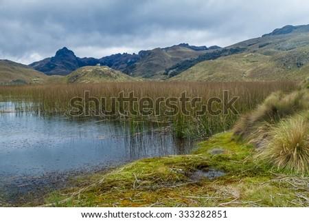 Laguna Totoras lake in National Park Cajas, Ecuador - stock photo
