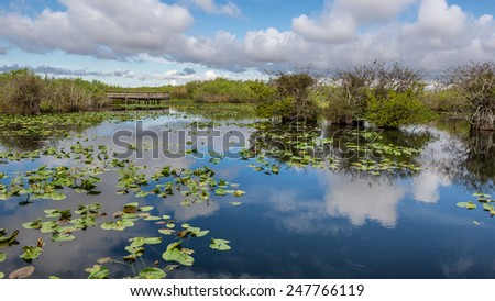 Lake and boardwalk in the wetlands of Everglades National Park, Florida - stock photo