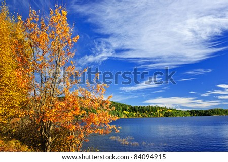 Lake and fall forest with colorful trees in Algonquin Park, Canada - stock photo