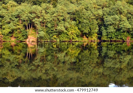 Lake and forest reflection in autumn