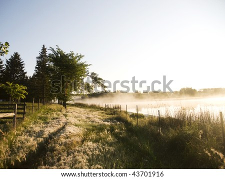 lake and meadow in the morning