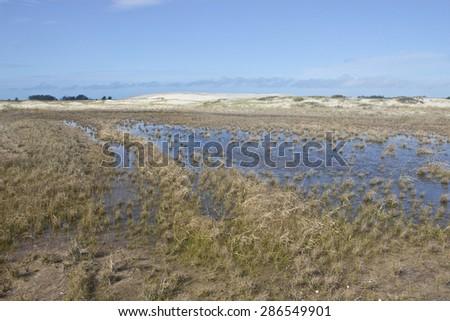 Lake at dunes park - Cidreira - Tramandai - Rio Grande do Sul - Brazil - stock photo
