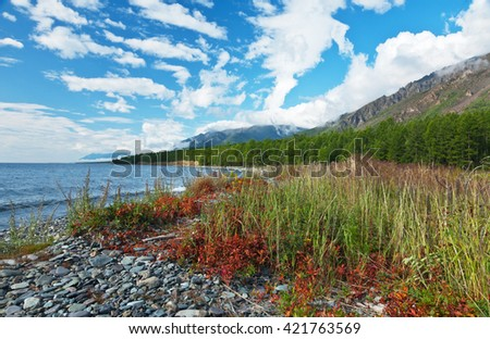 Lake Baikal in August. Reddened leaves on coastal grasses. Low clouds on the mountains  - stock photo