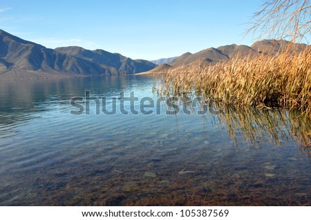 Lake Benmore in Autumn, Otago New Zealand. To the right are native Bulrushes called Raupo. Lake Benmore is man made and very popular for holidays and trout fishing.
