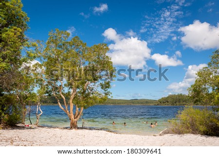 Lake Birrabeen at Fraser island in Australia - stock photo