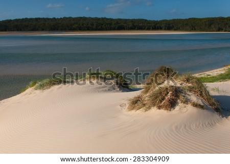 Lake Conjola, Australia - grass on a sand dune - stock photo