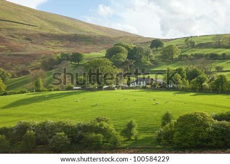Lake District, Cumbria. UK. English countryside. spring - stock photo
