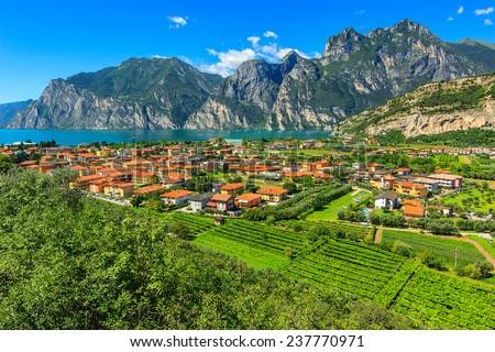 Lake Garda and vineyards near Torbole town,South Tyrol,Italy,Europe - stock photo