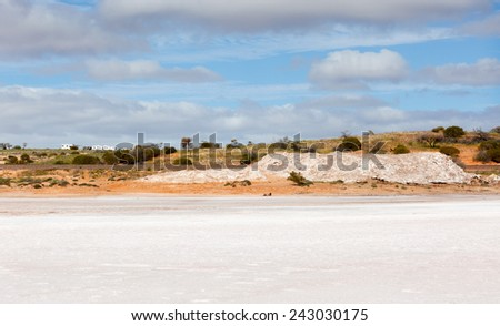 Lake Hart is a salt lake in South Australia very pretty but harsh conditions - stock photo
