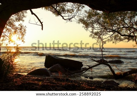 Lake Huron Sunrise. Great Lakes sunrise framed by a willow tree. Lexington, Michigan. - stock photo
