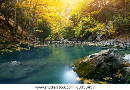 Lake in autumn forest. Nature composition. - stock photo