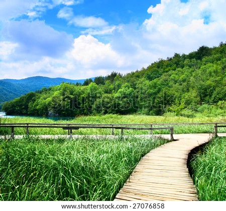 lake in deep forest and wood road - stock photo