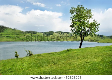 Lake in nature - stock photo