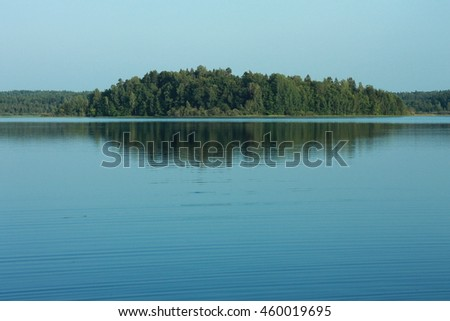 Lake in summer forest