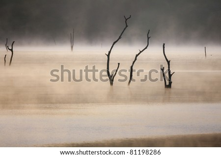 Lake in The morning  background - stock photo