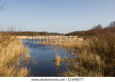 Lake in The Netherlands - stock photo