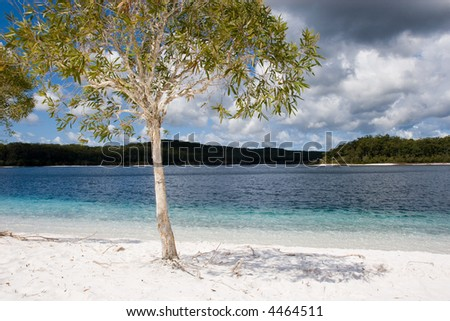 Lake McKenzie is an amazing clear lake on fraser island with super white sand - stock photo