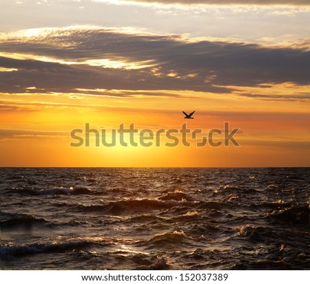 Lake Michigan And A Solitary Seagull Against A Golden Sunset Sky At Grand Haven Michigan, USA - stock photo