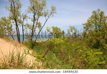 Lake Michigan view from the top of the dune at Jean Klock Park, Benton Harbor, Michigan (focus on the plants in the foreground)