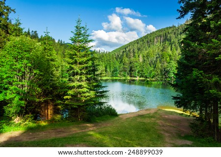 lake near the pine forest in mountains - stock photo