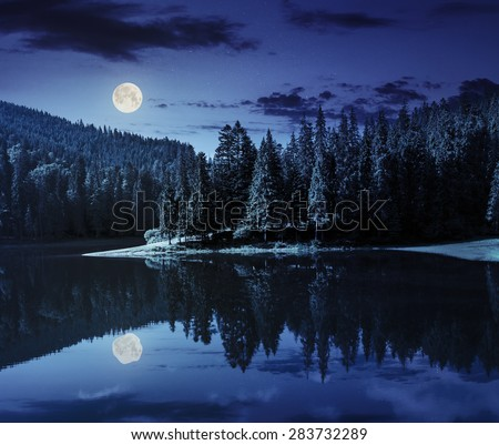 lake near the pine forest in mountains at night in full moon light - stock photo