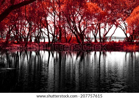 Lake of the Woods in a beautiful place eastern Europe - stock photo