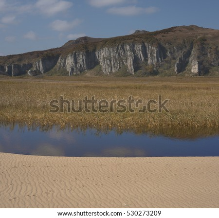 Lake overgrown with reeds and sandy clay banks
