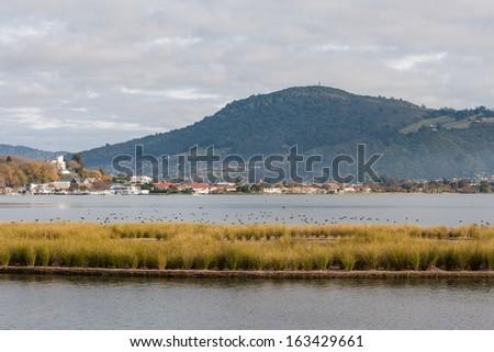 lake Rotorua in autumn - stock photo