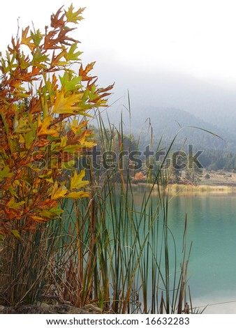 lake scene - stock photo