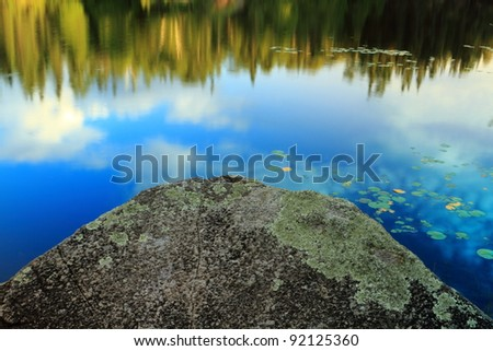 Lake shore fragment with beautiful reflections