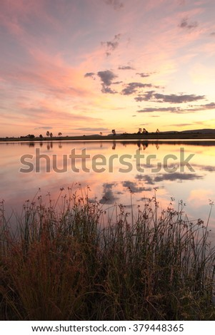 Lake side reflections on Duralia Lake, Penrith with foreground long grasses