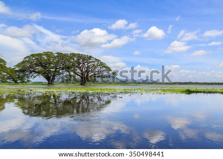 Lake side view with trees and mountains in the background - stock photo