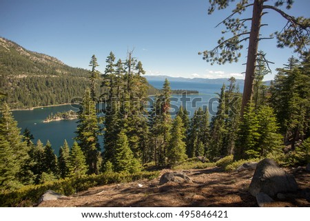 Lake Tahoe through trees