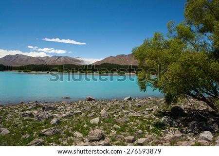 Lake Tekapo (New Zealand) - Stony shore of turquoise lake, forest, mountain and valley filled with fog in background, tree in foreground - stock photo